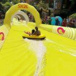 Foliões terão ônibus gratuitos no Carnaval de Belo Horizonte