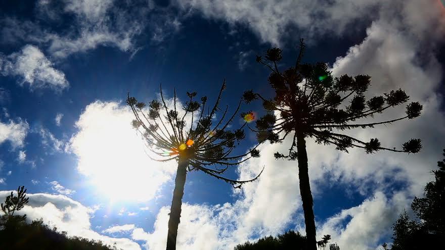 Conheça as atrações de Foz do Iguaçu em vídeo da Avianca