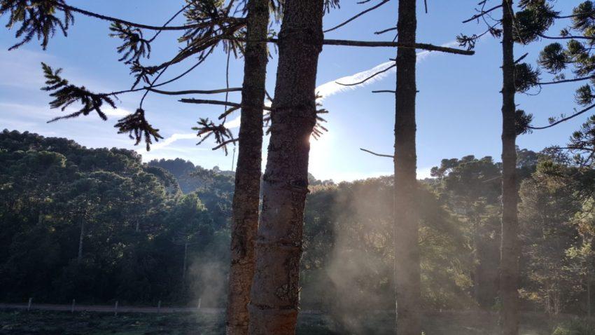 Monte Verde se prepara para receber a 6ª edição do Festival de Inverno