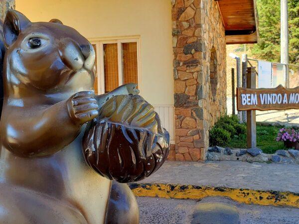 Monte Verde (MG) é destino para curtir feriados de novembro a dois ou em família